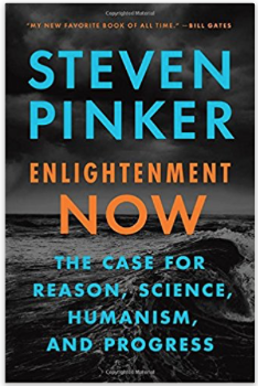 Image of book cover: Steven Pinker - Enlightenment Now